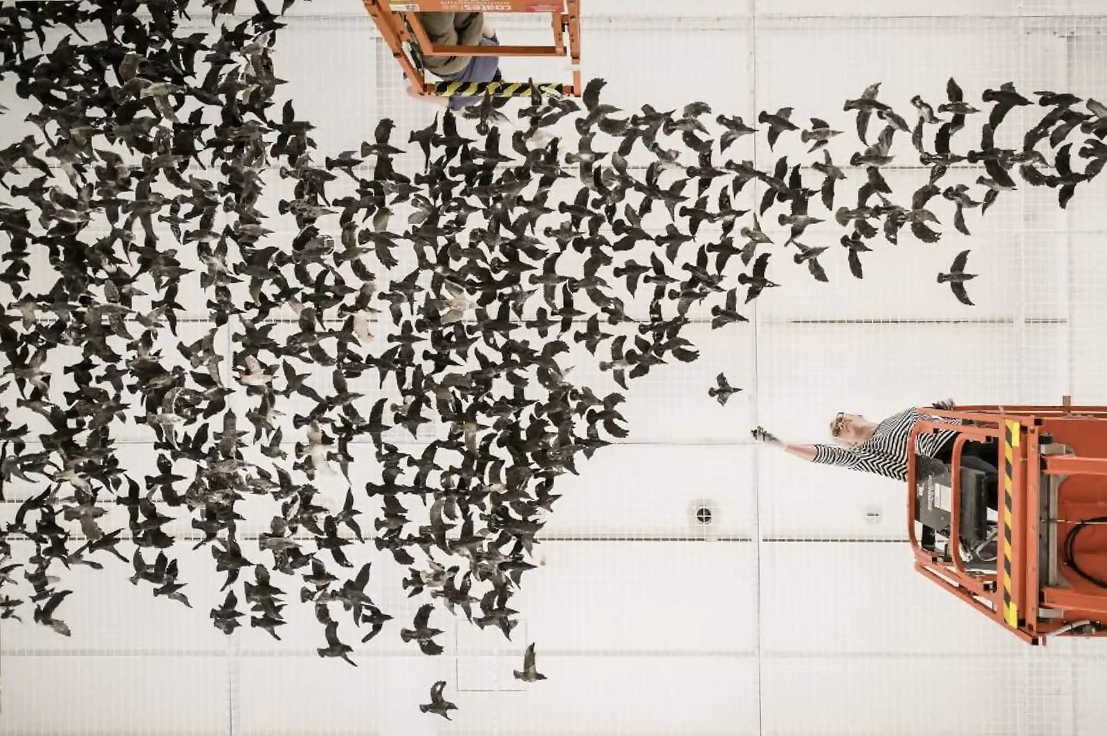 Murmuration by Cai Guo-Qiang